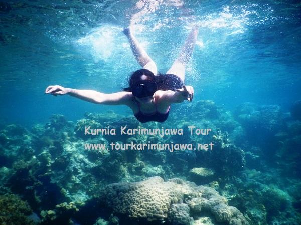 wisatawan paket snorkeling karimunjawa 2017