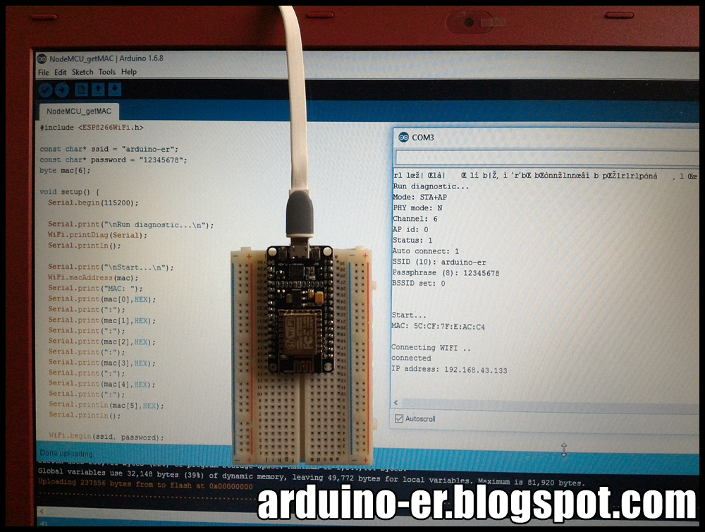 Arduino: why does Serialprintlnint, HEX display 4 bytes