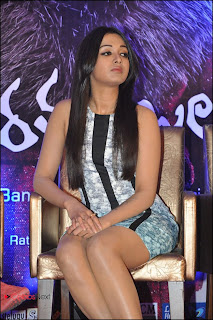 Catherine Tresa Pos at Iddarammayilatho Platinum Disc Function  0017.jpg