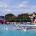 High School Diver's Competition Dive Goes Very Wrong--And We're Chuckling