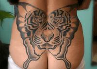 тату бабочки тигра
