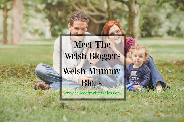 Meet the Welsh Bloggers - a series interviewing Welsh bloggers - this week is the turn of Welsh Mummy Blogs, a parenting blog based in South Wales
