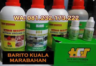 Jual SOC HCS, KINGMASTER, BIOPOWER Siap Kirim Barito Kuala Marabahan