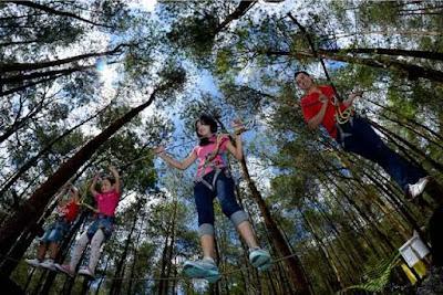 Lokasi Kopeng Treetop Adventure Park Getasan Semarang