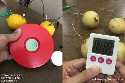 potato battery experiment