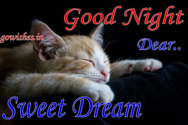 Good Night Wishes Wallpaper Image