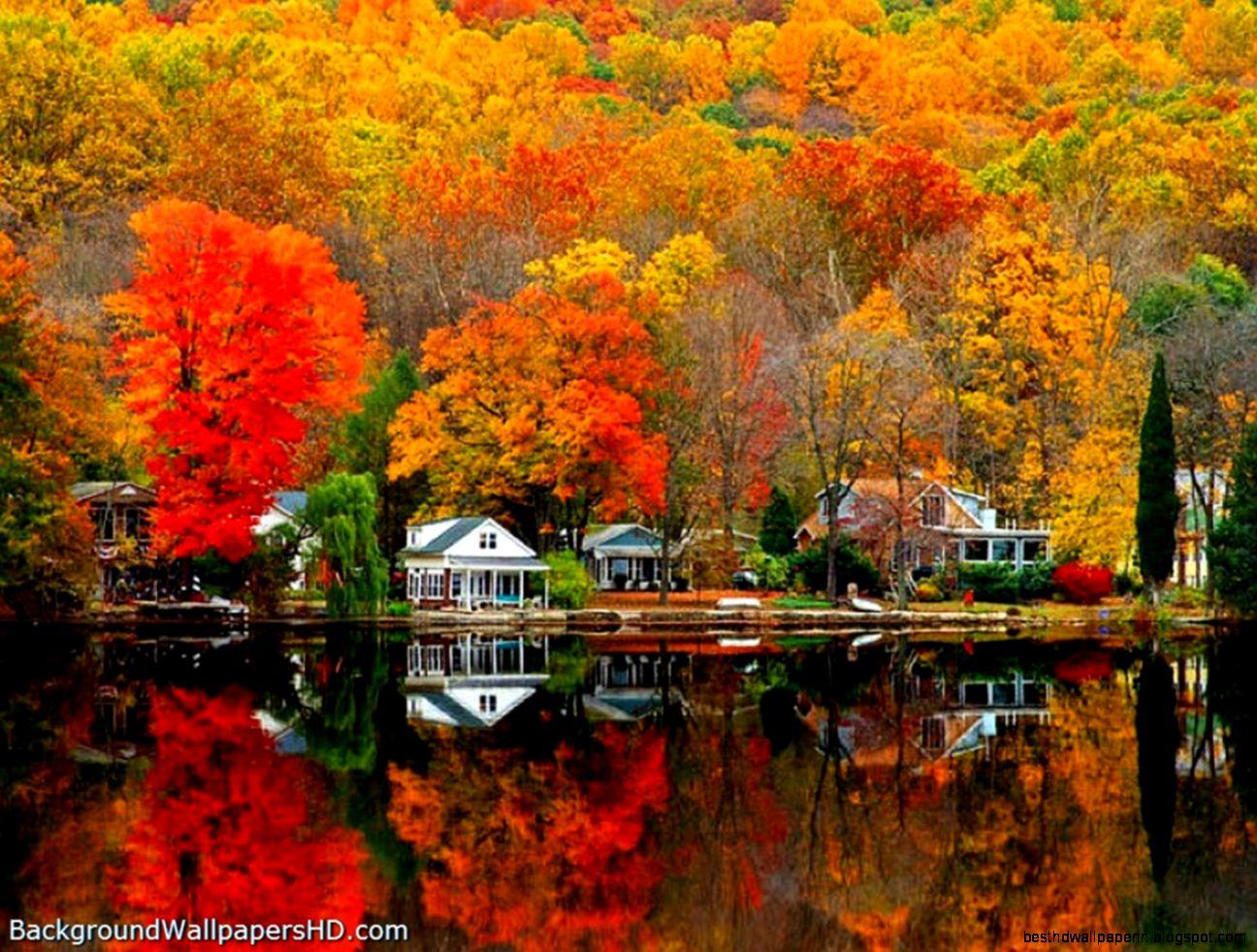 Autumn Scenes Desktop Wallpaper Best Hd Wallpapers