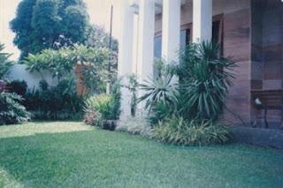 Galeri Taman - Tukang Taman Surabaya 29