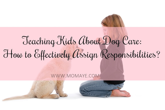 pets, home, home and living, kids, parenting, dog care