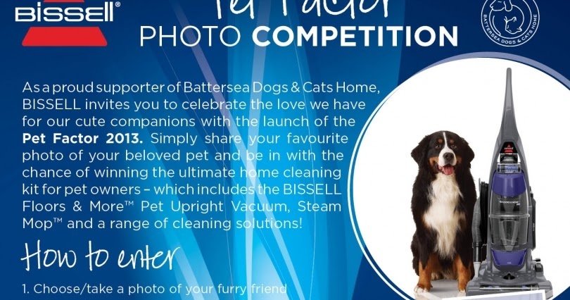 Madhouse Family Reviews Pet Factor 2013 Competition To