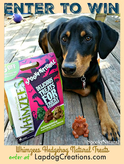 doberman mix dog with treats