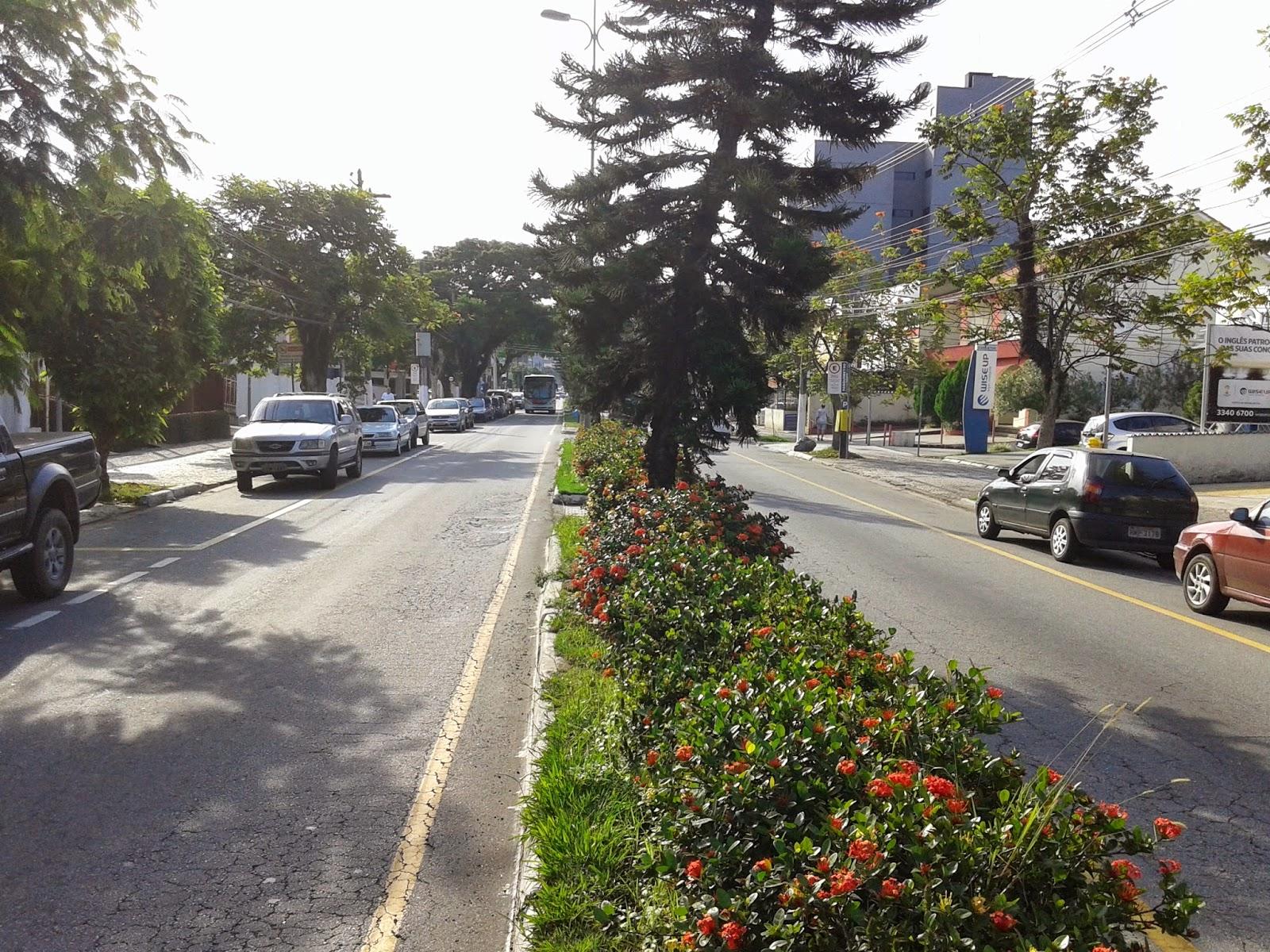 Rua 33