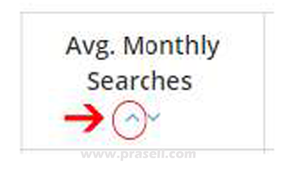 Avg Monthly Searches