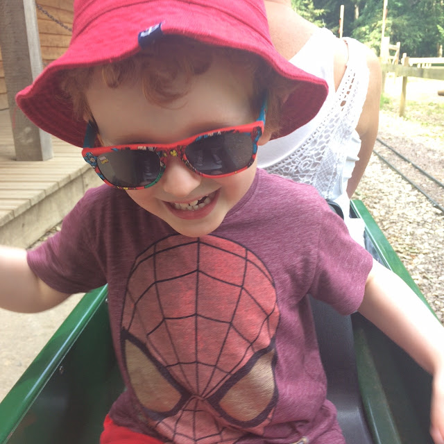 Little boy sitting on a small land train ride