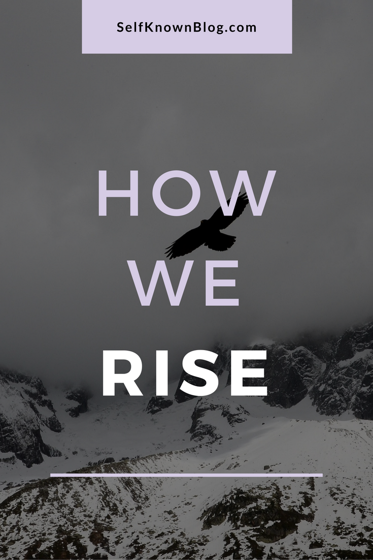 Humans are strange. Humans are lovely. This is how we rise. [Click through for more.]