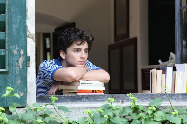 "Timothée Chalamet dans ""Call Me by Your Name"""