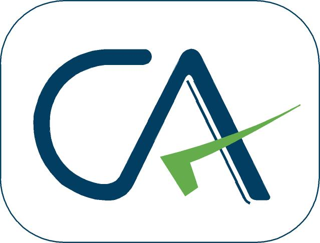 Ca(Chartered Accountant) quiz