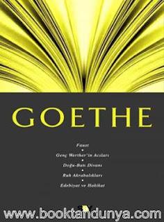 Gürsel Aytaç - Goethe (Fikir Mimarları Dizisi 5)