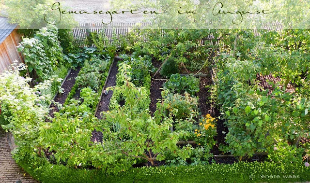 gartenblog geniesser garten gem segarten im august. Black Bedroom Furniture Sets. Home Design Ideas