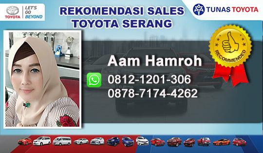 Rekomendasi Sales Toyota Serang Banten