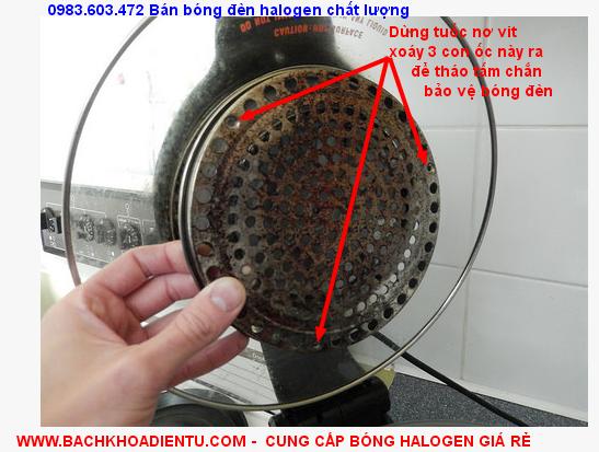 huong dan thay the bong den halogen thuy tinh