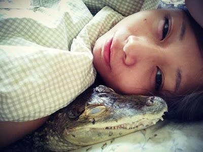 Sashimi-rela-tidur-dengan-buaya