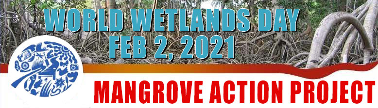 Mangrove Action Project CELEBRATING MORE THAN 25 YEARS