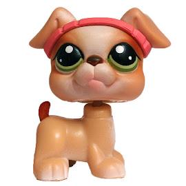 Littlest Pet Shop Small Playset Boxer (#235) Pet