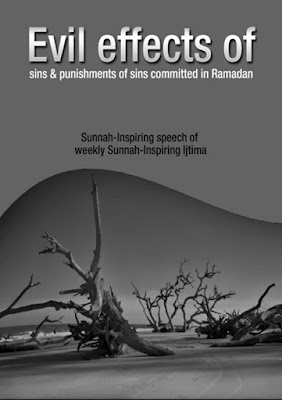 Download: Evil Effects of Sins pdf in English