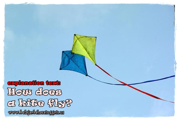 Contoh Explanation Text tentang how does a kite fly | www.belajarbahasainggris.us