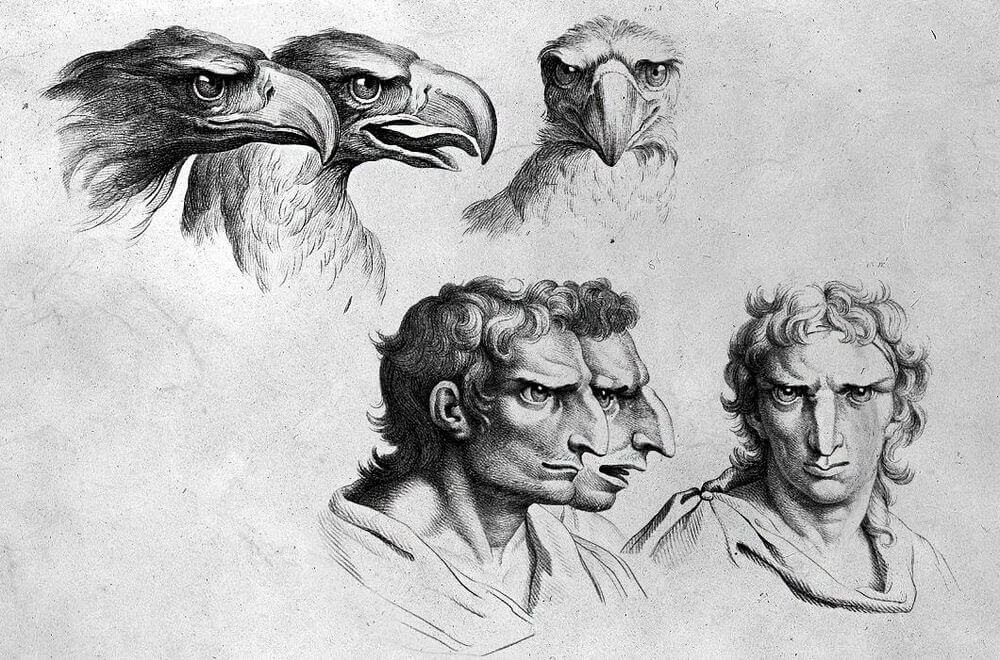 01-Eagle-Animal-Transformations-Drawings-from-the-1600s-www-designstack-co