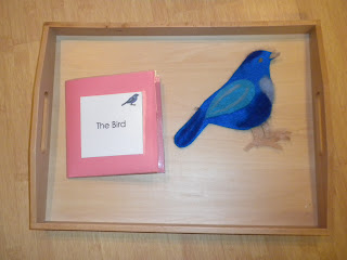 Parts of a Bird Activity  (Photo from Discovery Days and Montessori Moments)