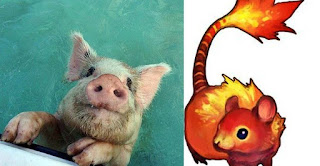2017 Love Chinese Horoscope Water Pig and Fire Rat