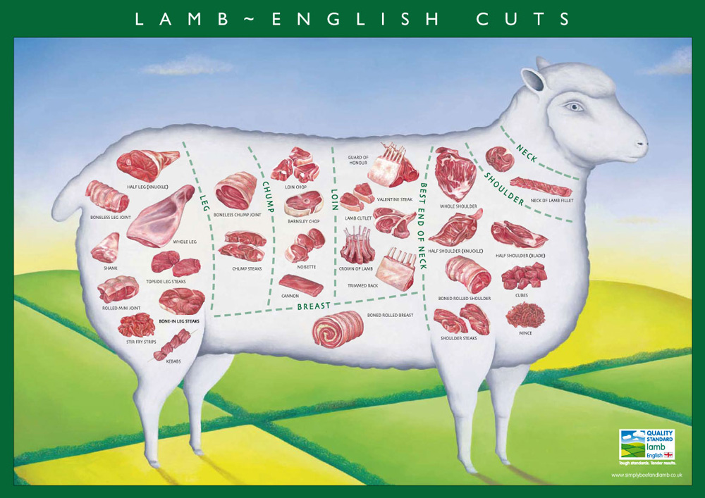 from what animal is scrag end a cut of meat