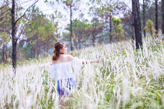 Đà Lạt: Đẹp rạng ngời đồi cỏ lau trên thảm Dương xỉ xanh mướt