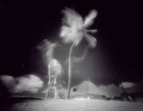 dirty blog - photographers - Justin Quinnell
