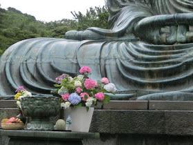 鎌倉大仏とアジサイ