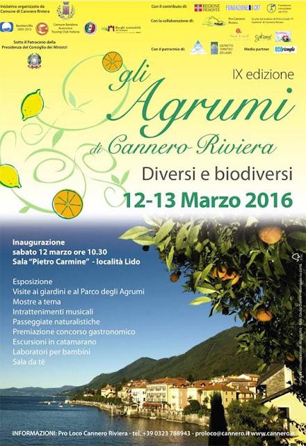 Festa degli agrumi 2016 la locandina