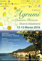 Festa agrumi Cannero locandina