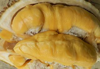 Betulkah durian terenak di dunia itu durian Musangking?