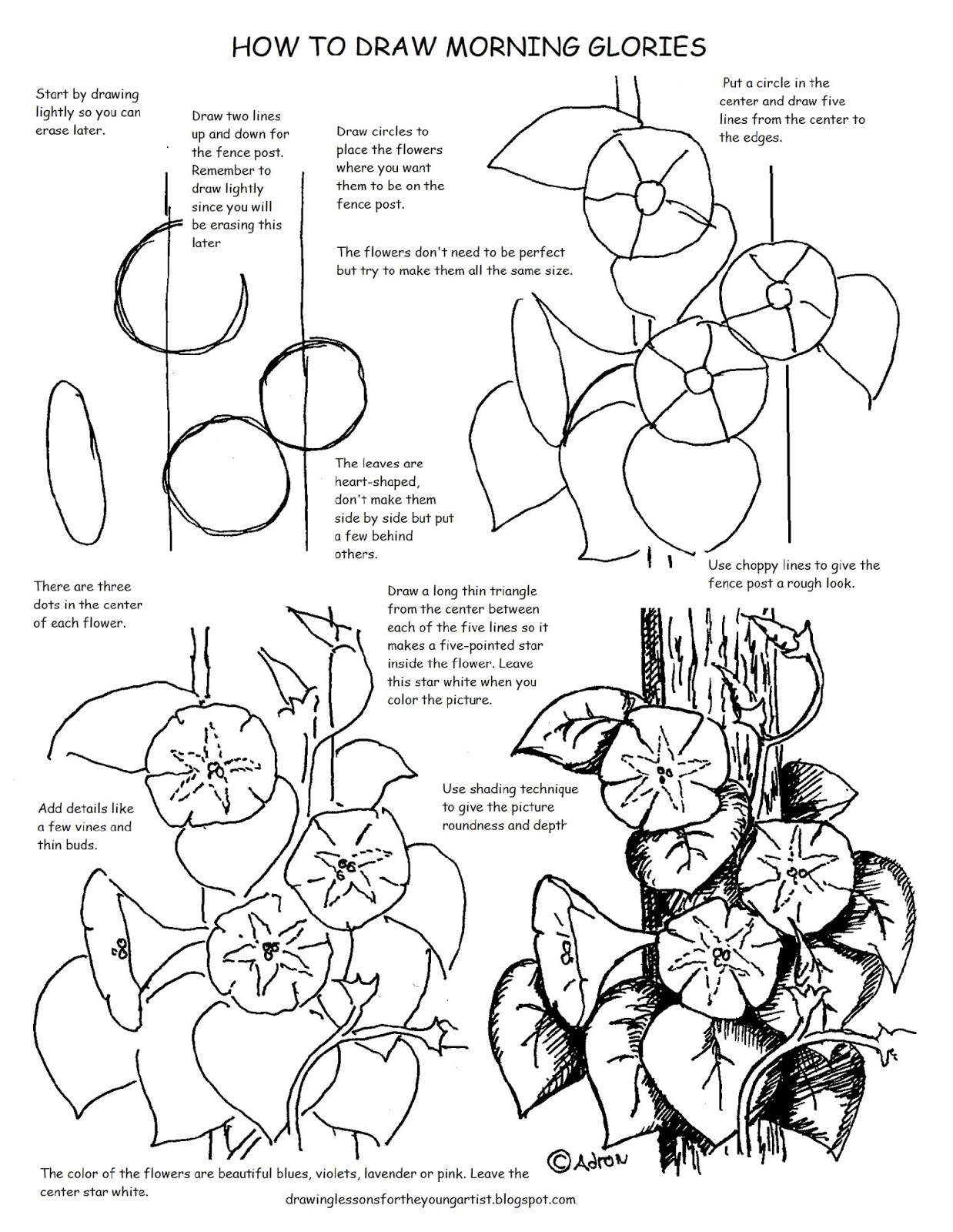 How to Draw Worksheets for The Young Artist: Printable How to Draw ...