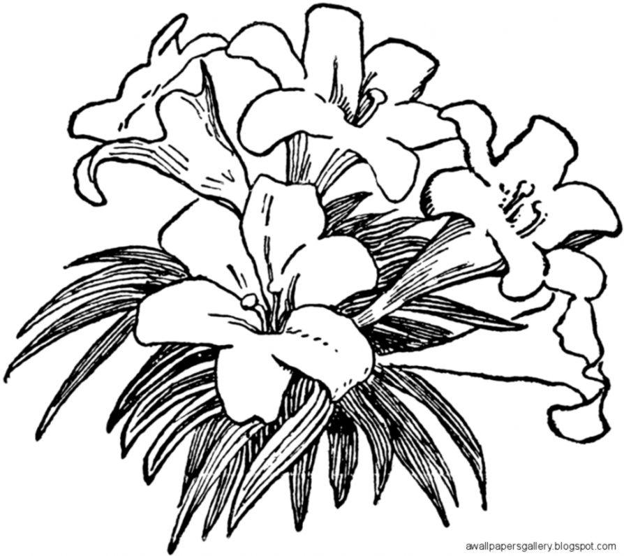 Easter Flowers Clip Art Black And White