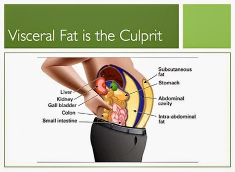 Best Foods To Eat To Lose Visceral Fat