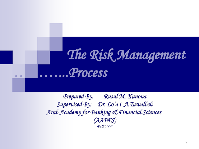 what are the Risk Management Process pdf