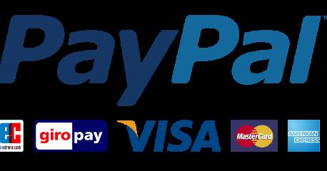 Paypal Benefits And Drawbacks