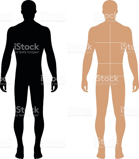 Fashion Man Solid Template Figure Silhouette With Marked Body Royaltyfree  Stock Vector Art