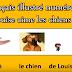 Le français illustré numéro 9 : Louise aime les chiens