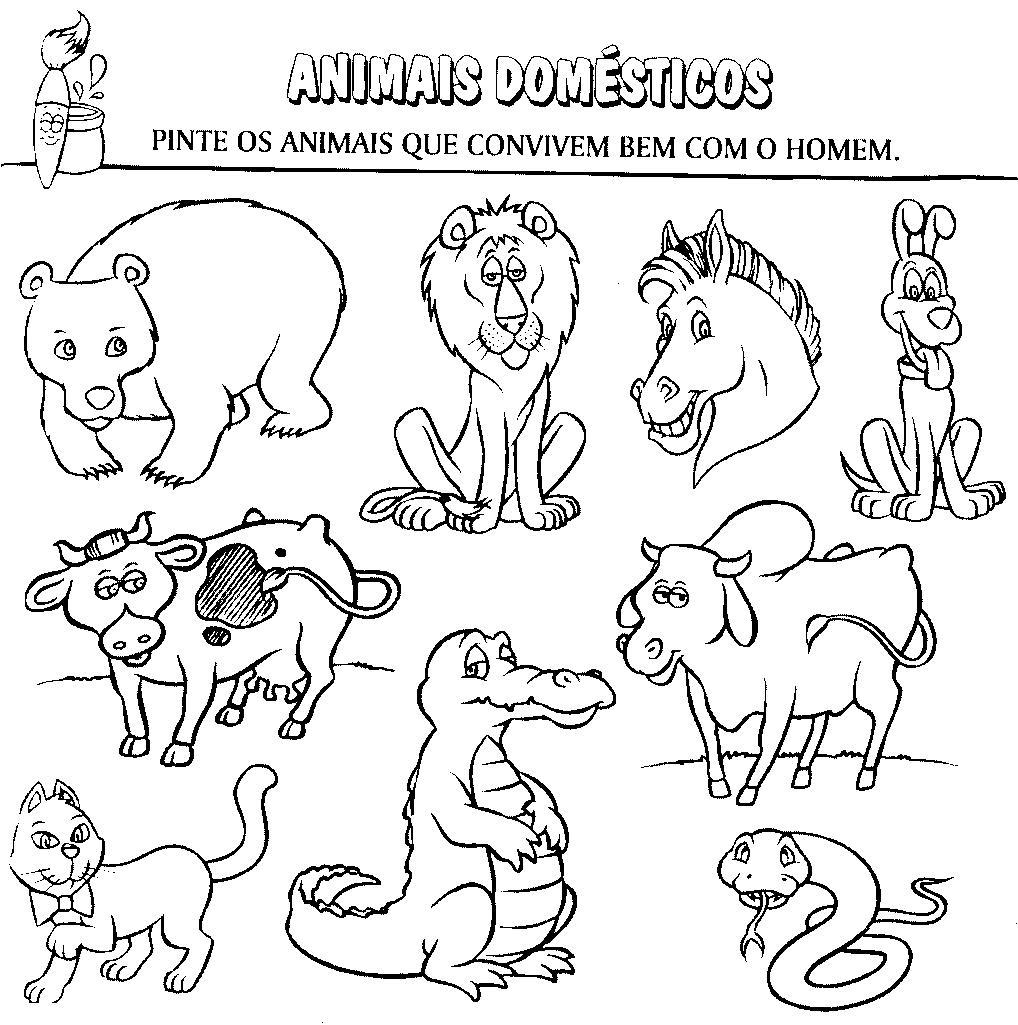 animais domÉsticos e selvagens atividades exercÍcios desenhos