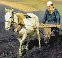 Ploughing the soil