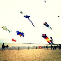 festival du cerf volant sur la plage chatellaillon spectacle magique